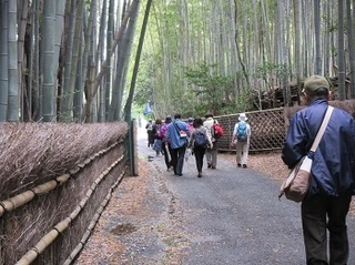 "JR contact of hiking ""Takebayashi bath and romance enjoyment - bamboo held diameter and ... around old burial mound group""!"